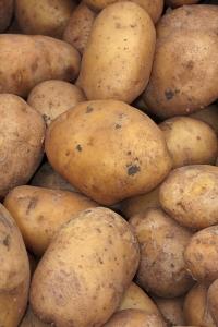 Potato-texture-1399901-m